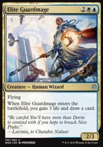 Elite Guardmage FOIL
